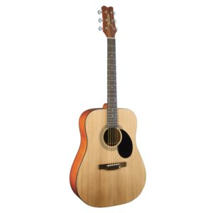 buying entry guitar jasmine