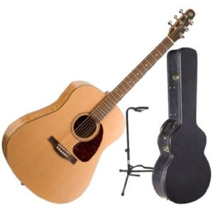 buying mid guitar seagull